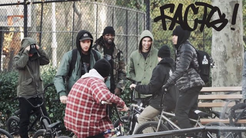 ANIMAL BIKES: FACTS PROMO by Ride BMX