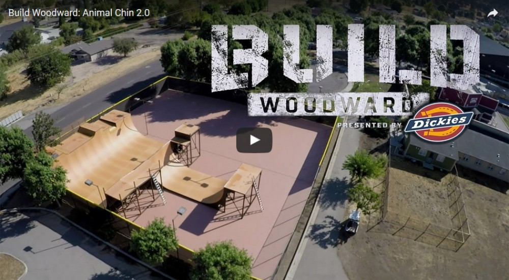Build Woodward: Animal Chin 2.0 by Woodward Camp
