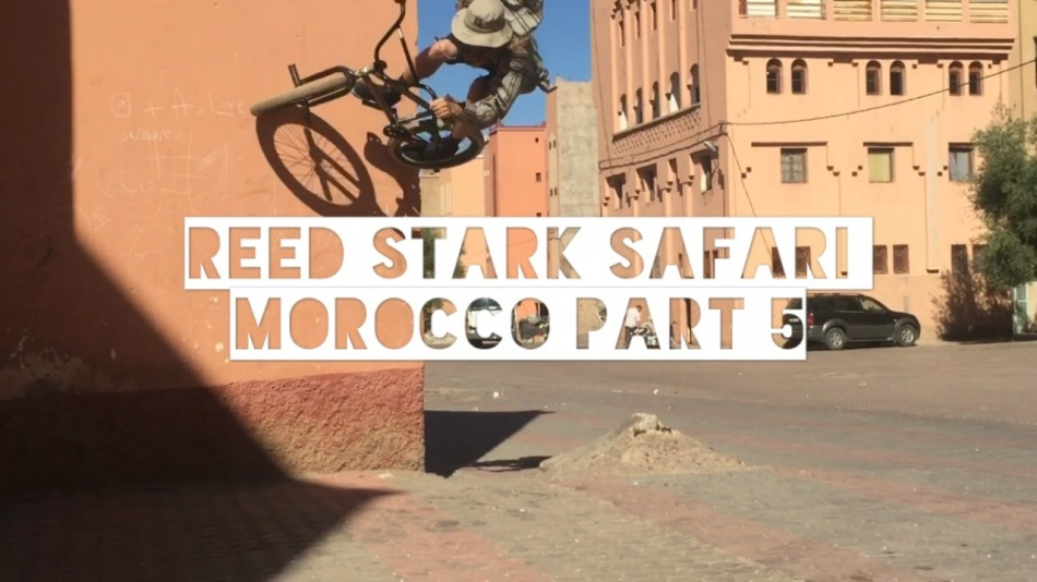MOROCCO PART 5: DIPPIN TO THE DESERT - By Reed Stark safari