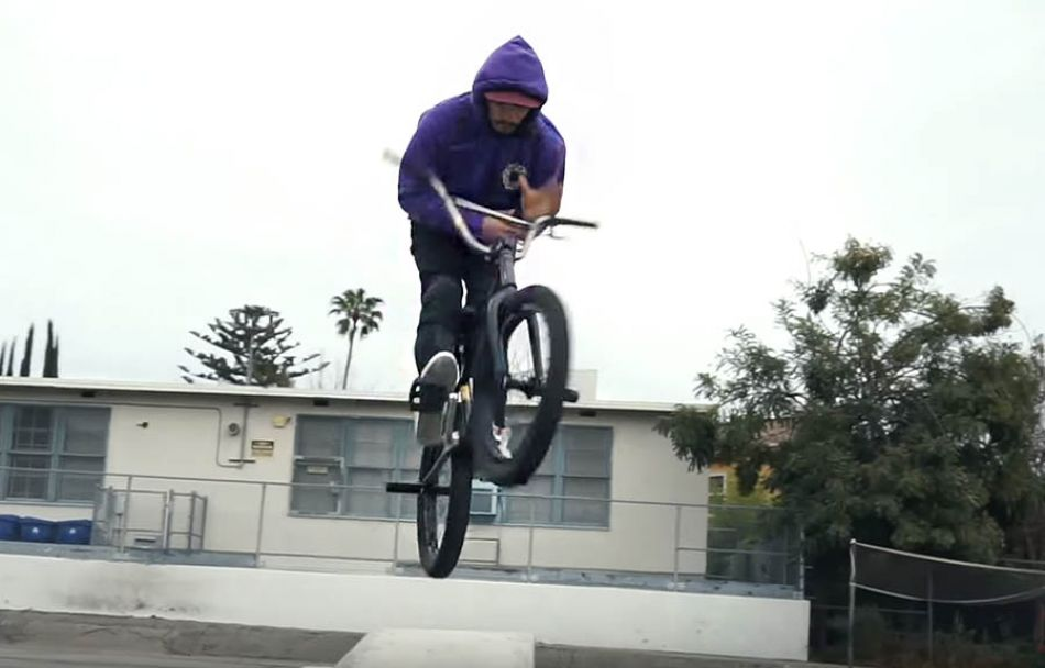 BMX - GD BENCHWARMERS by GOLDEN DAYS
