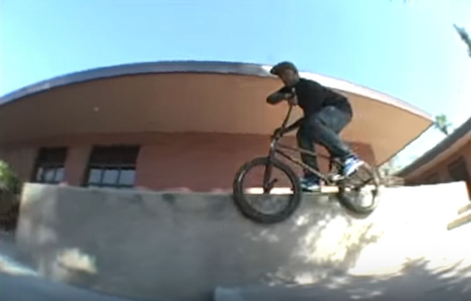 Clay Johnson - Animal Bikes