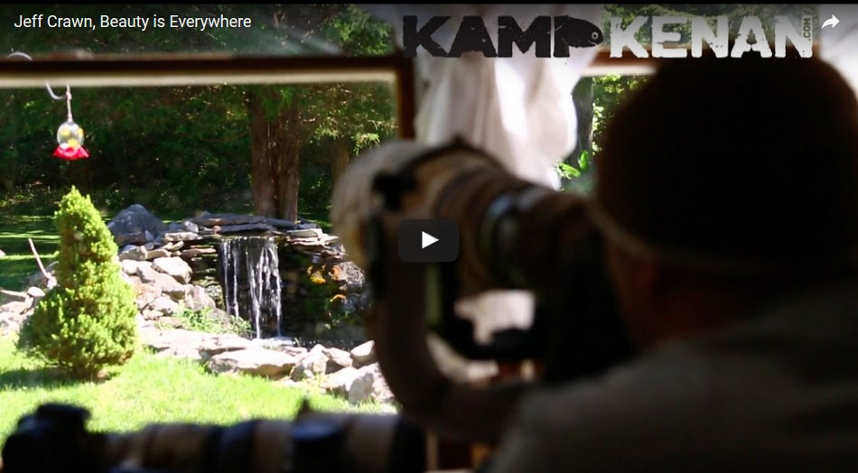 Jeff Crawn, Beauty is Everywhere by Kamp Kenan